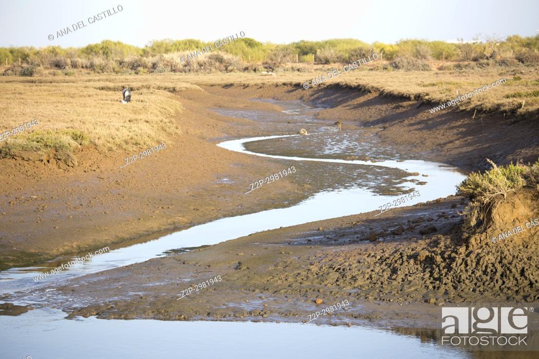 Stock Photo: Gilao river in Tavira Algarve Portugal.