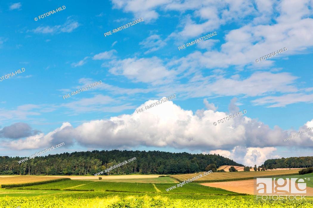 Stock Photo: Landscape at Barterode, Flecken Adelebsen, Naturraum Sollingvorland, Landkreis Göttingen, Niedersachsen, Germany, HDR / Feldlandschaft in Barterode.