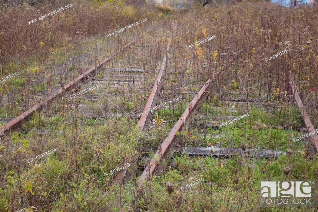 Stock Photo: Abandoned Railroad Tracks.