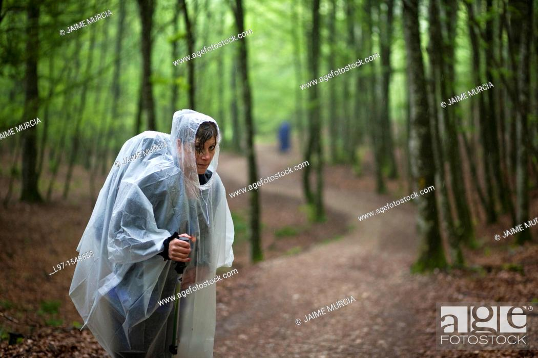Stock Photo: Women in rain coat standing in a forest on the Camino de Santiago near Roncesvalles, Spain.