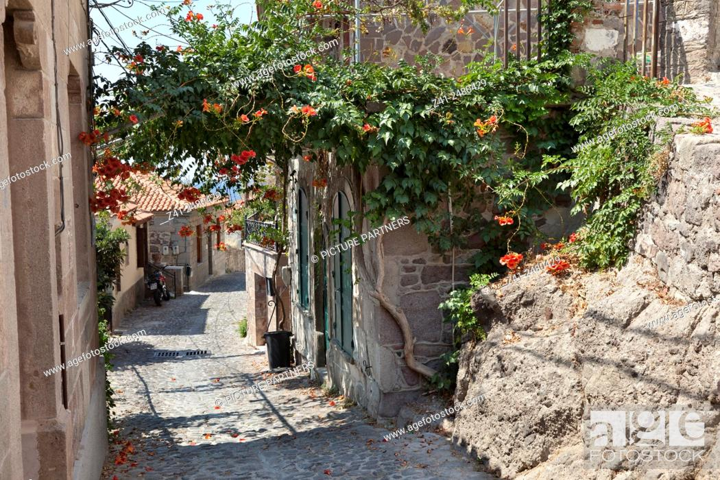 Photo de stock: Small street in the old city of Mithymna , Lesbos, Greece.