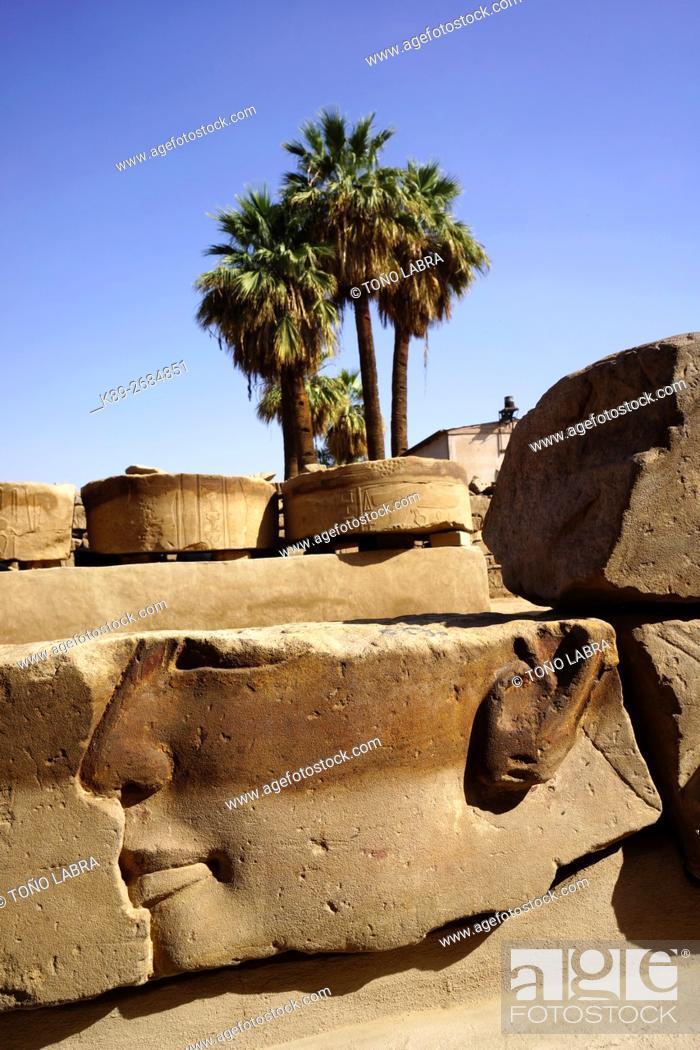 Imagen: Pharaonic Relief. Luxor Temple. Luxor. Upper Egypt.