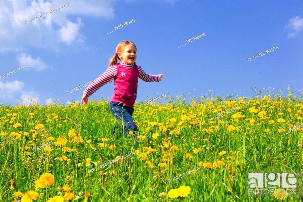 Stock Photo: girl running through field of Dandelions,Zuercher Oberland, Zuerich, Switzerland.