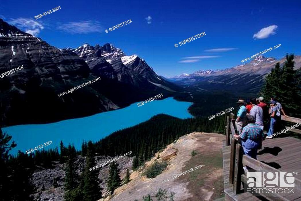 Stock Photo: CANADA, ALBERTA, BANFF NATIONAL PARK, PEYTO LAKE, OVERLOOK, TOURISTS.
