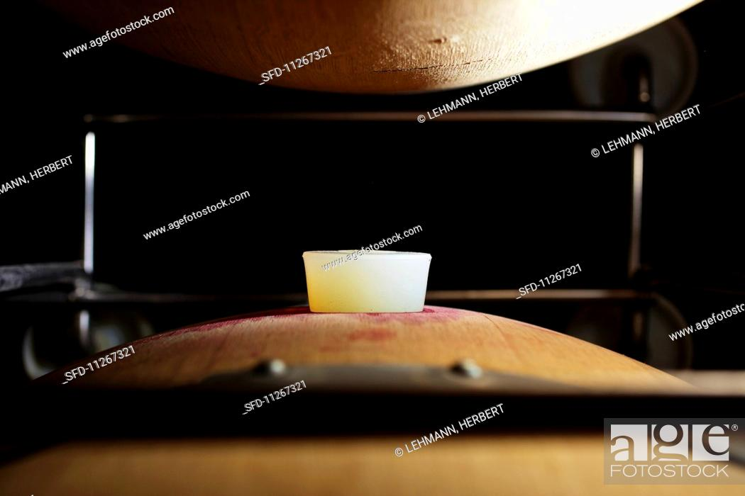 Stock Photo: A barrique barrel with a silicon stopper in wine cellar (close-up).