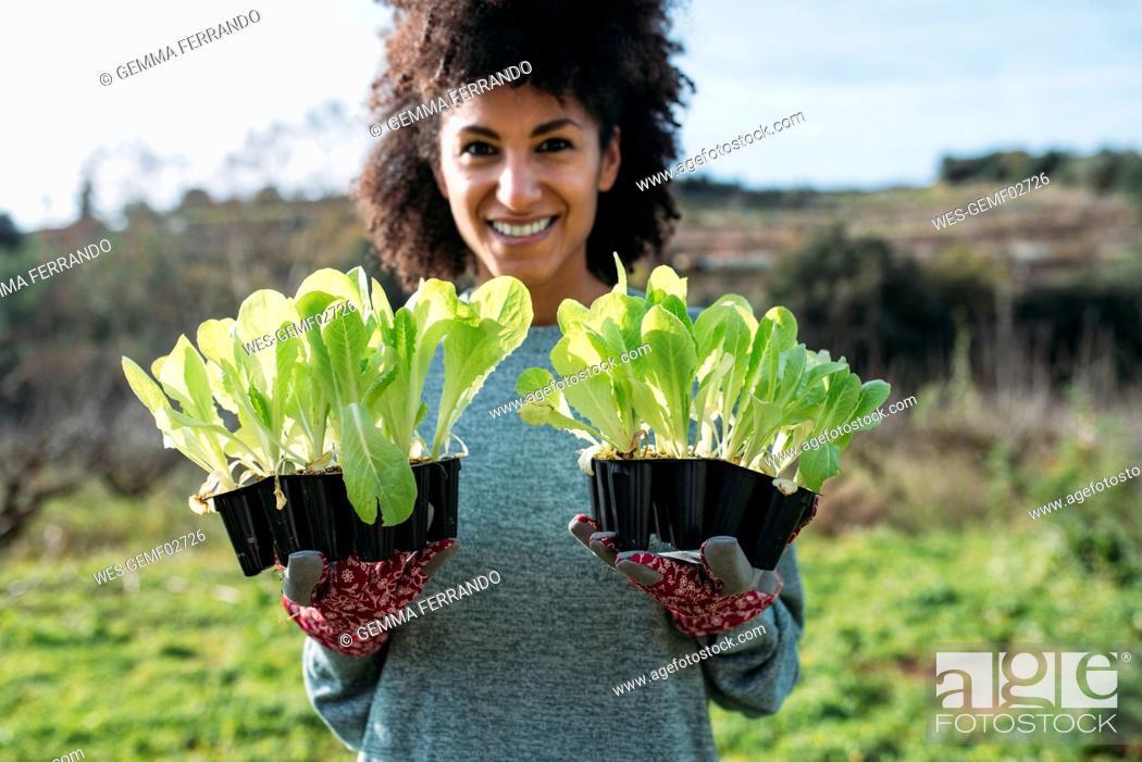 Stock Photo: Smiling woman holding lettuce seedlings in a vegetable garden.