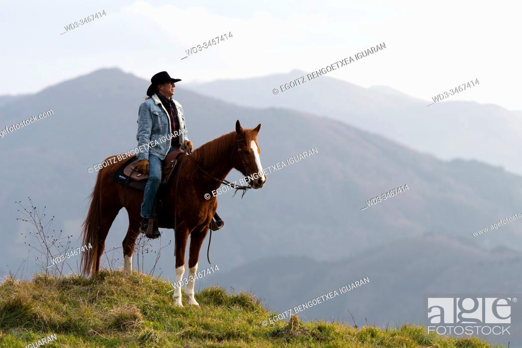 Stock Photo: A veteran cowboy on his arabian horse with a wild landscape in the background.