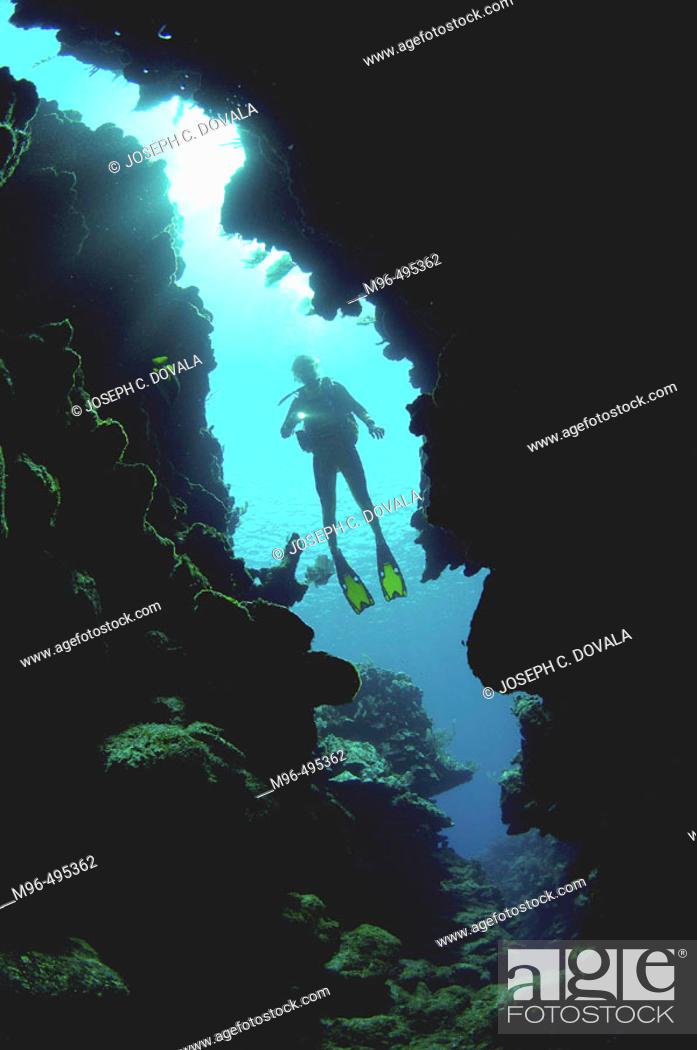 Stock Photo: Diver heading inside coral reef crevice. Roatan. Honduras.