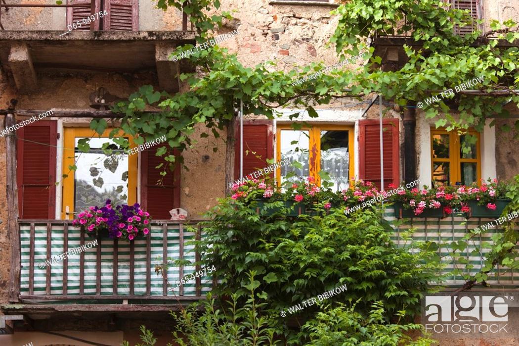 Stock Photo: Switzerland, Ticino, Lake Lugano, Carona, garden detail.