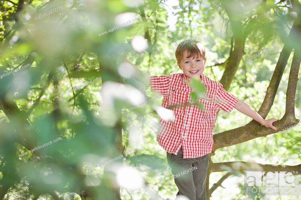 Stock Photo: Boy climbing tree outdoors.
