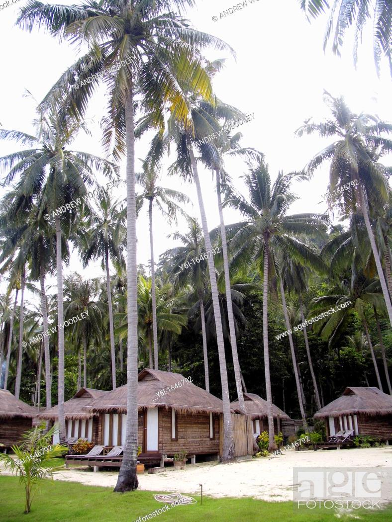Stock Photo: Thatch bungalows coconut grove CoCo Cottage Resort Ko Ngai island Thailand.