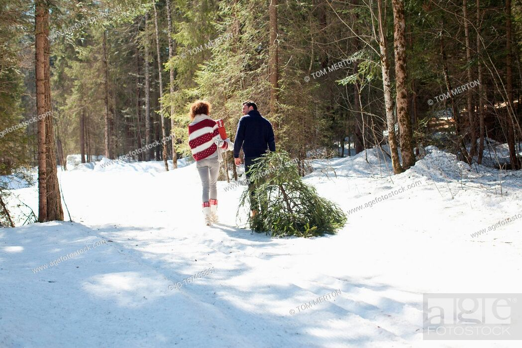 Stock Photo: Man and woman with fresh cut Christmas tree.