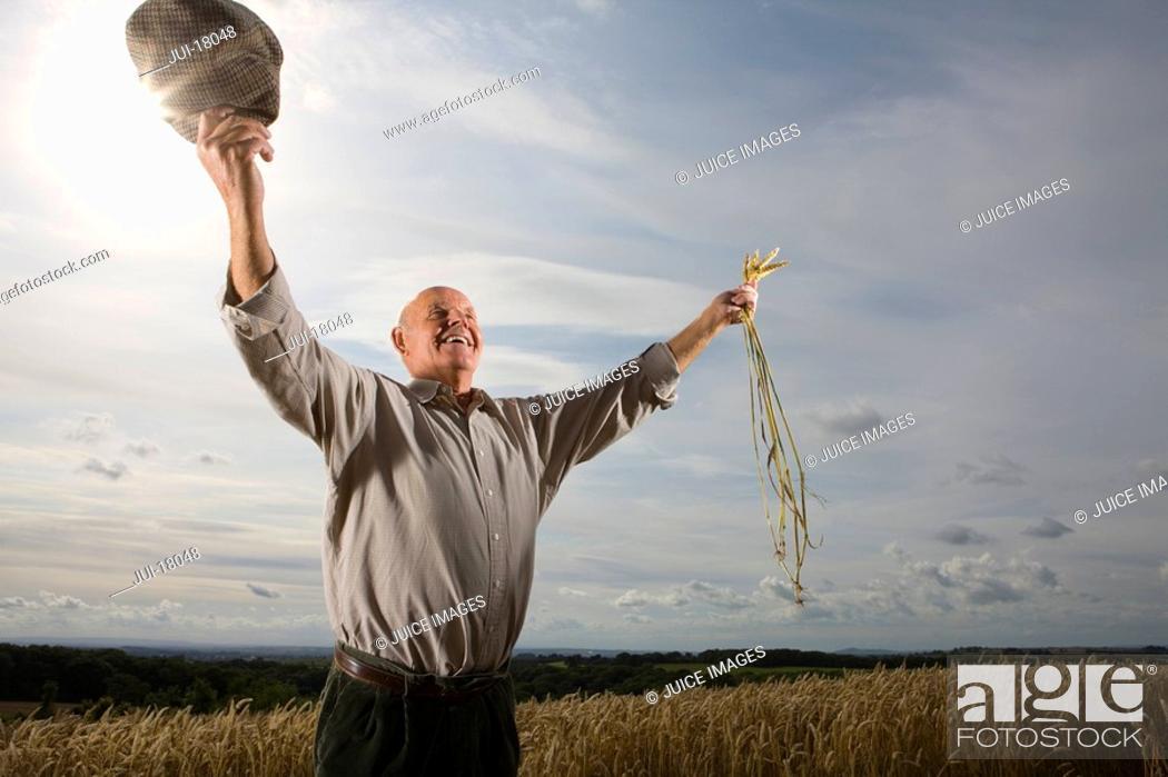 Stock Photo: Farmer standing in wheat field.