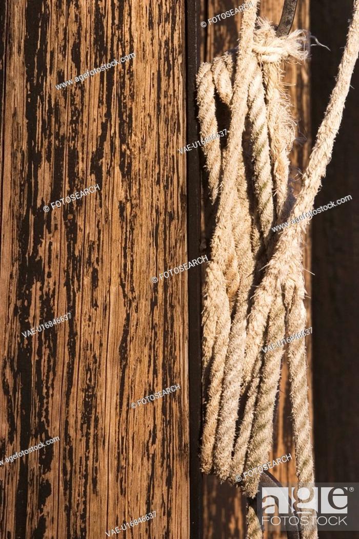 Stock Photo: surface, planks, poles, wood, wooden, wood grain.
