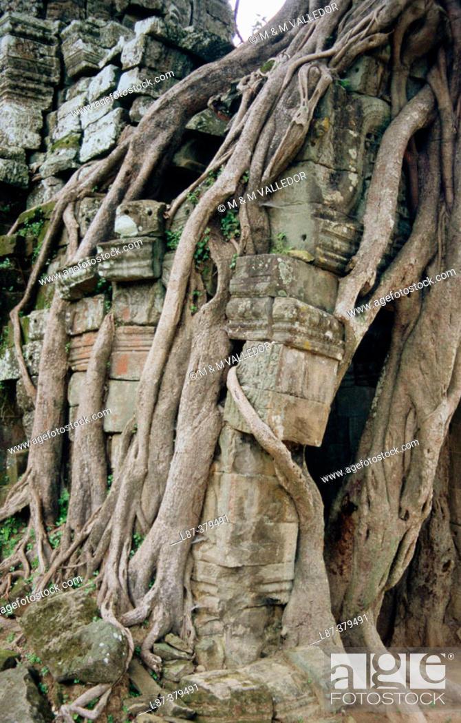 Stock Photo: Ta Prohm Temple (12th Century). Angkor. Cambodia.