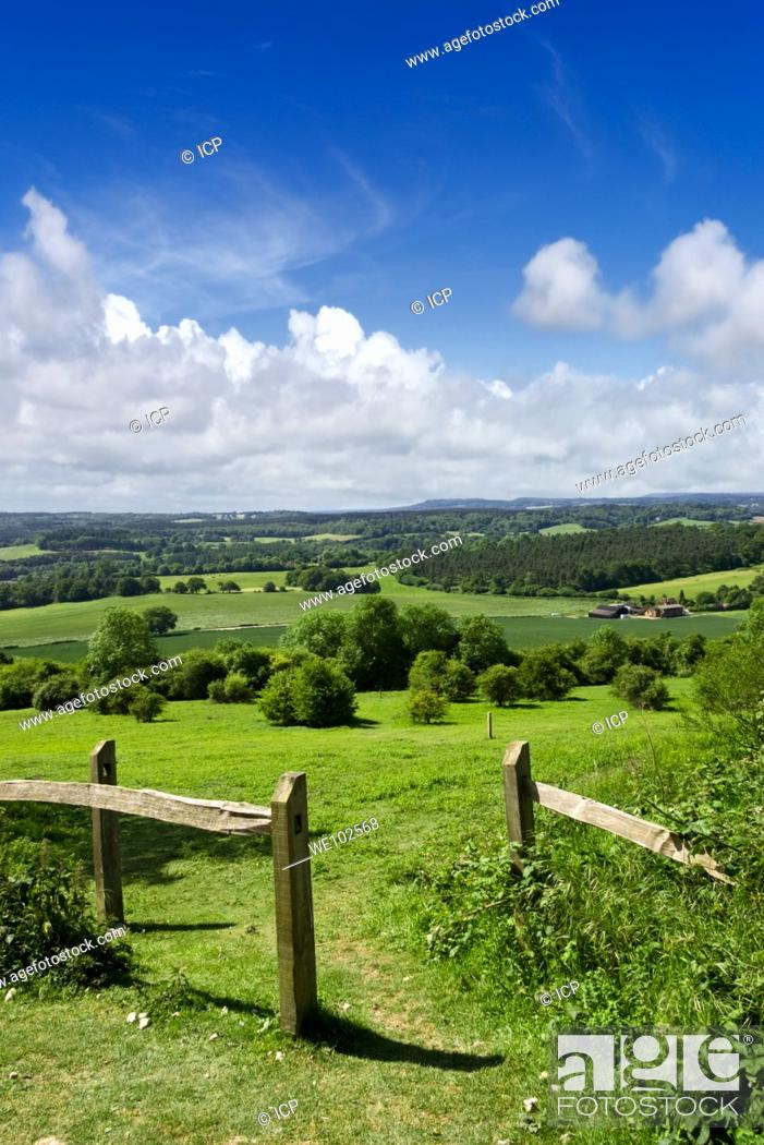Stock Photo: English scene: North Downs Way looking toward the South Downs in Sussex at Newlands Corner in the Surrey Hills England UK.