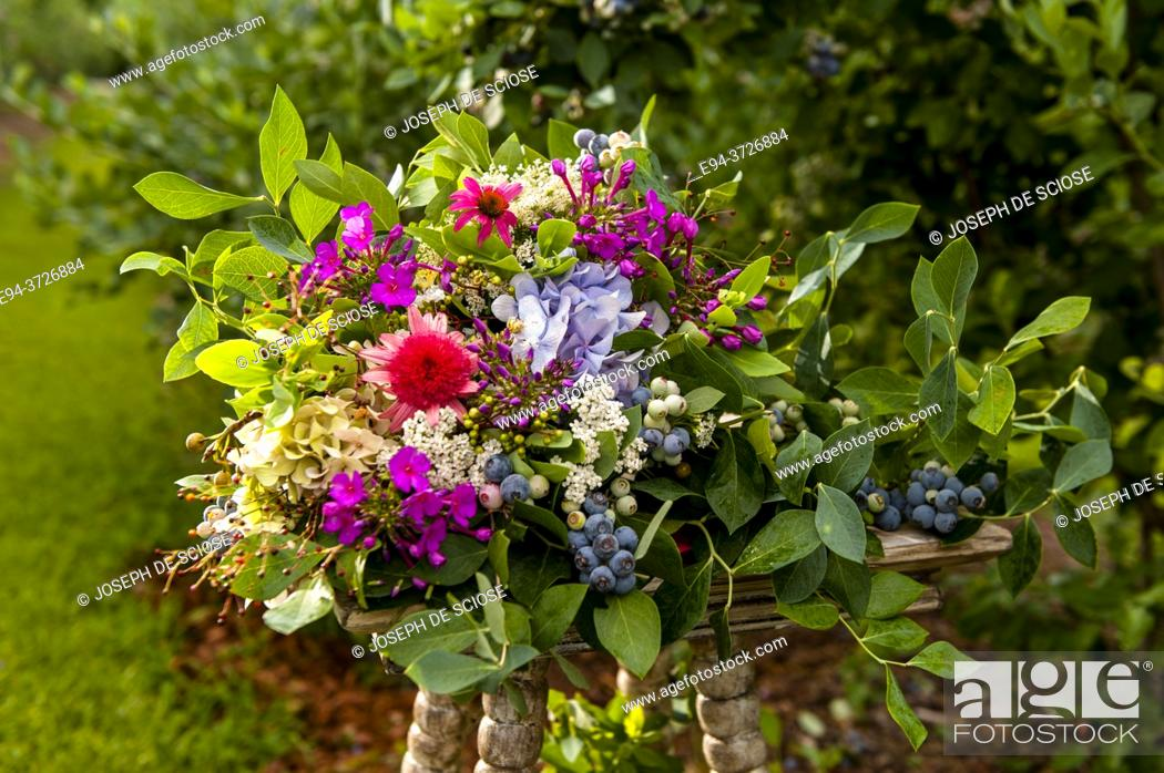 Photo de stock: A bouquet of flowers in a garden setting with blueberry shrubs in the background.