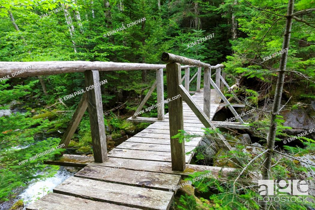 Stock Photo: The Sanders Bridge along the Randolph Path in Low and Burbank's Grant, New Hampshire during the summer months. This footbridge crosses Cold Brook.