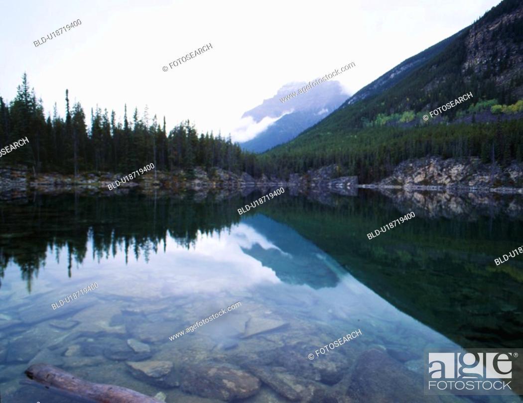 Stock Photo: forest, nature, tree, mountain, scene, pond, landscape.