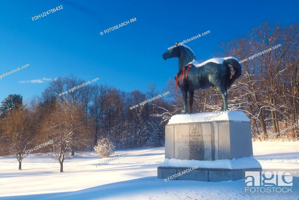 Morgan Horse Uvm Morgan Horse Farm Snow Winter Holiday Decorations A Statue Of A Morgan Horse Stock Photo Picture And Rights Managed Image Pic Foh U24756432 Agefotostock