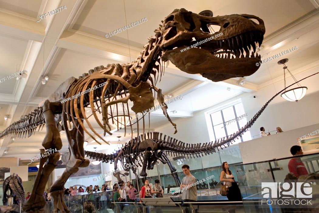 Stock Photo: American Museum of Natural History  Hall of saurischian Dinosaurs, New York City, USA.