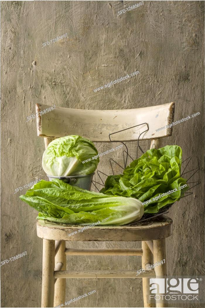 Stock Photo: Lettuce, romaine and iceberg salad.