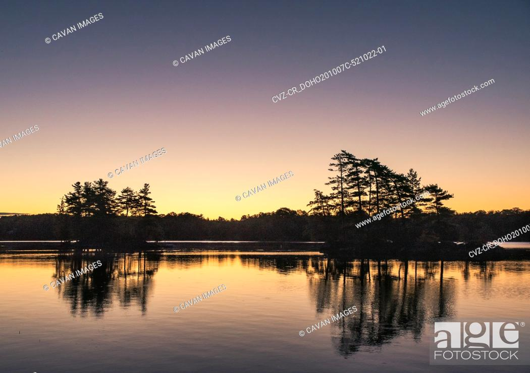 Stock Photo: Silhouette of trees on a lake in Ontario, Canada at sunrise.