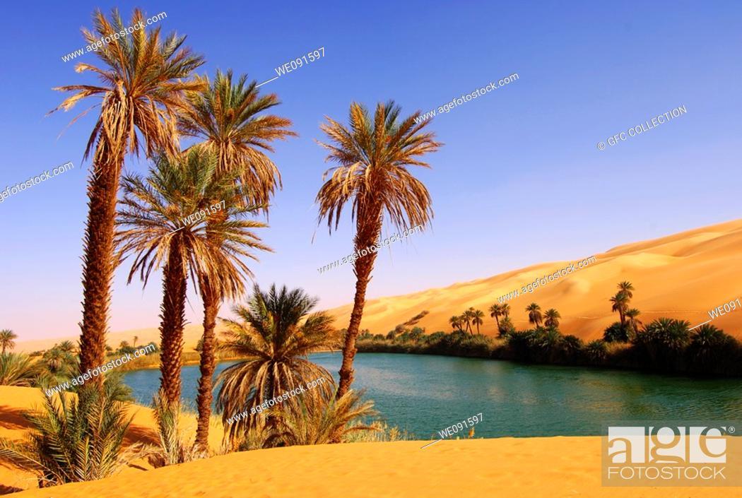 Stock Photo: Palm trees on the bank of the Um el Maa lake in the Awbari sand sea, Sahara desert, Libya.