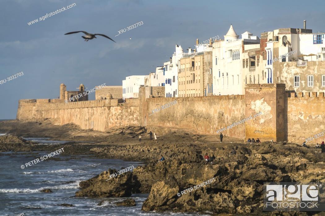 Stock Photo: city wall and medina on the coast in Essaouira, Kingdom of Morocco, Africa.