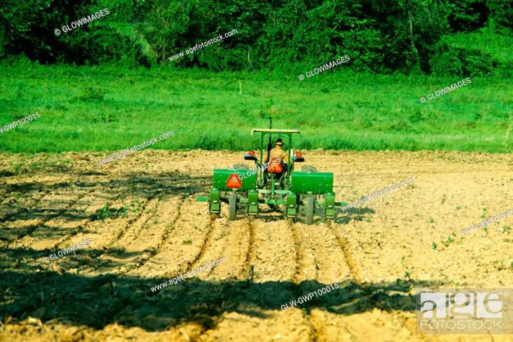 Stock Photo: Planting corn in Virginia.