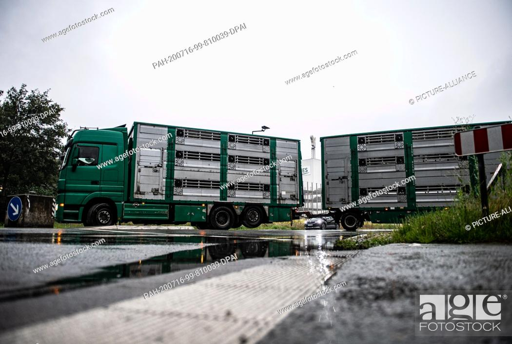 Stock Photo: 16 July 2020, North Rhine-Westphalia, Rheda-Wiedenbrück: A livestock transporter, which previously delivered pigs, drives from the Tönnies factory premises.