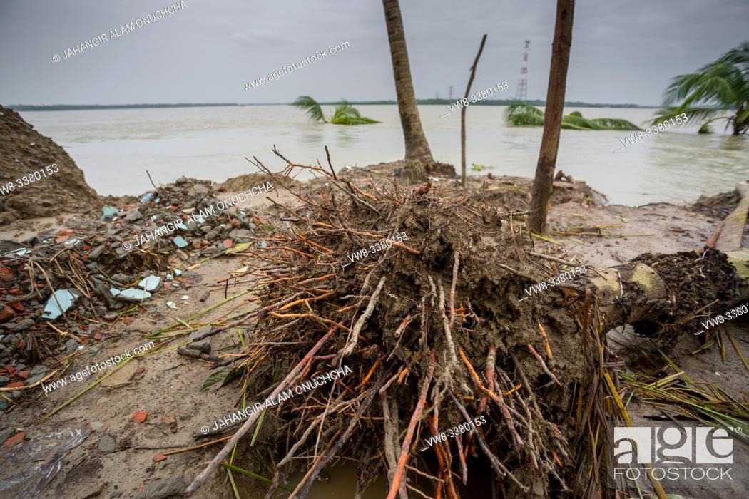 Stock Photo: Bangladesh - June 27, 2015: Massive effect of river erosion at Rasulpur, Barisal District.