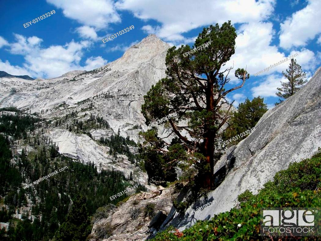 Stock Photo: Le Conte Canyon is located in the Sierra Nevada Mountains of California.