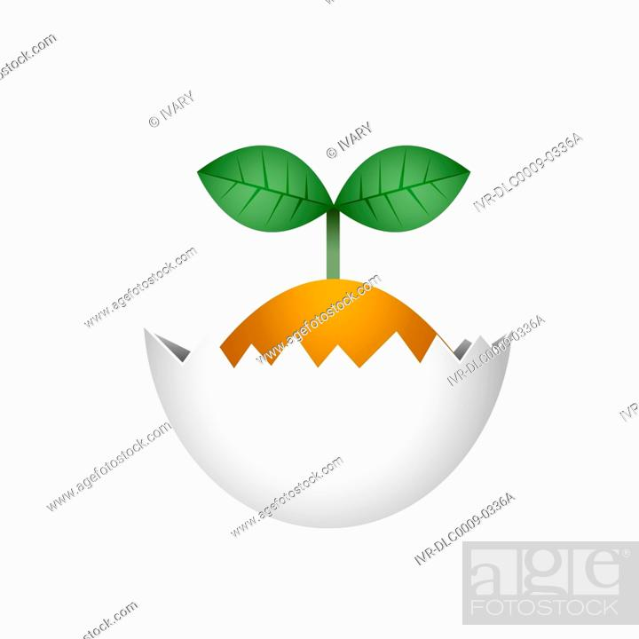 Stock Photo: Illustration of new plant growing from egg shell.