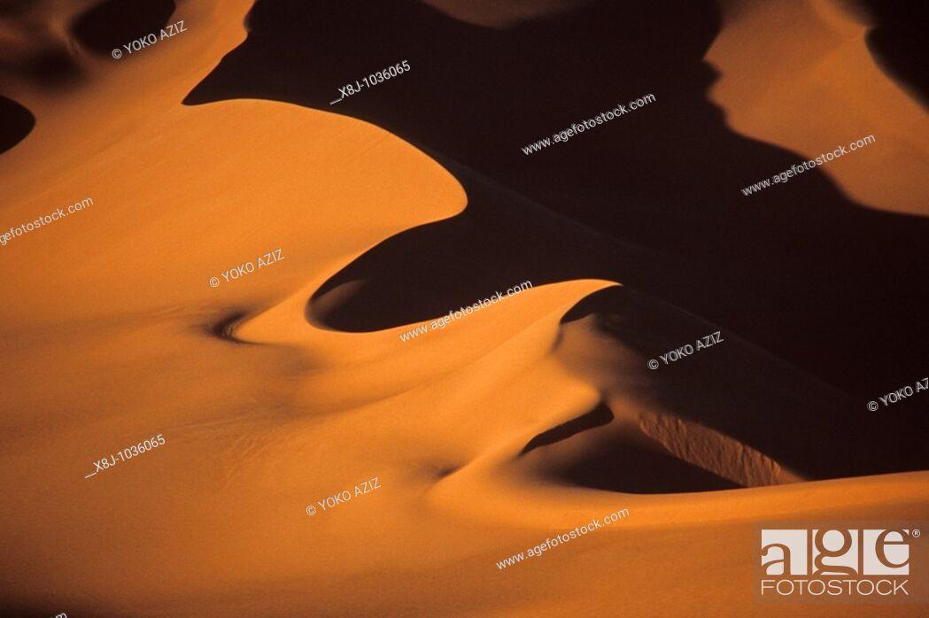 Stock Photo: egyptian desert.