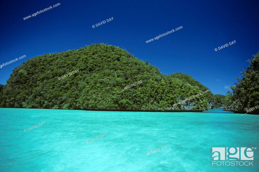 Imagen: Rock islands and turquoise water, Palau Palau Belau, Pacific Ocean.