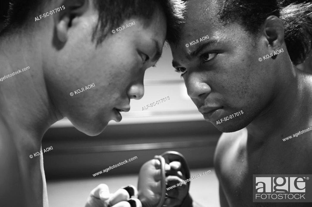 Stock Photo: Mixed Martial Arts Fighters Staring each other down.