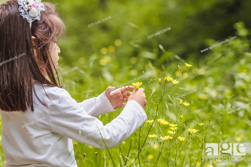 Imagen: Adorable four years old cute little girl picks wild flower at meadow in a sunny day.