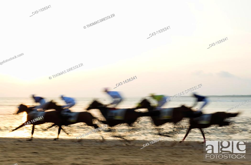 Stock Photo: Spain - The famous horse races of Sanlucar de Barrameda take place every year during August along a 1 800m stretch of beach at the mouth of the River.