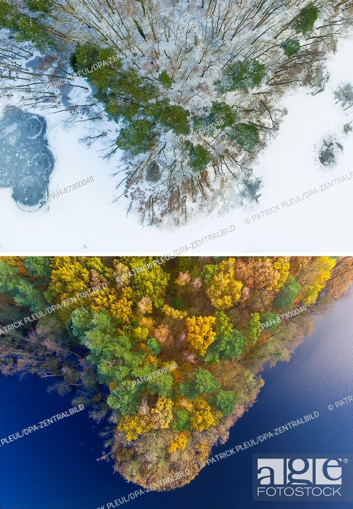 Stock Photo: COMBO - The 2-part composite picture shows the same section of wooded bank of Treplin lake near Treplin, Germany, in winter on 17 January 2017 (top) and in.