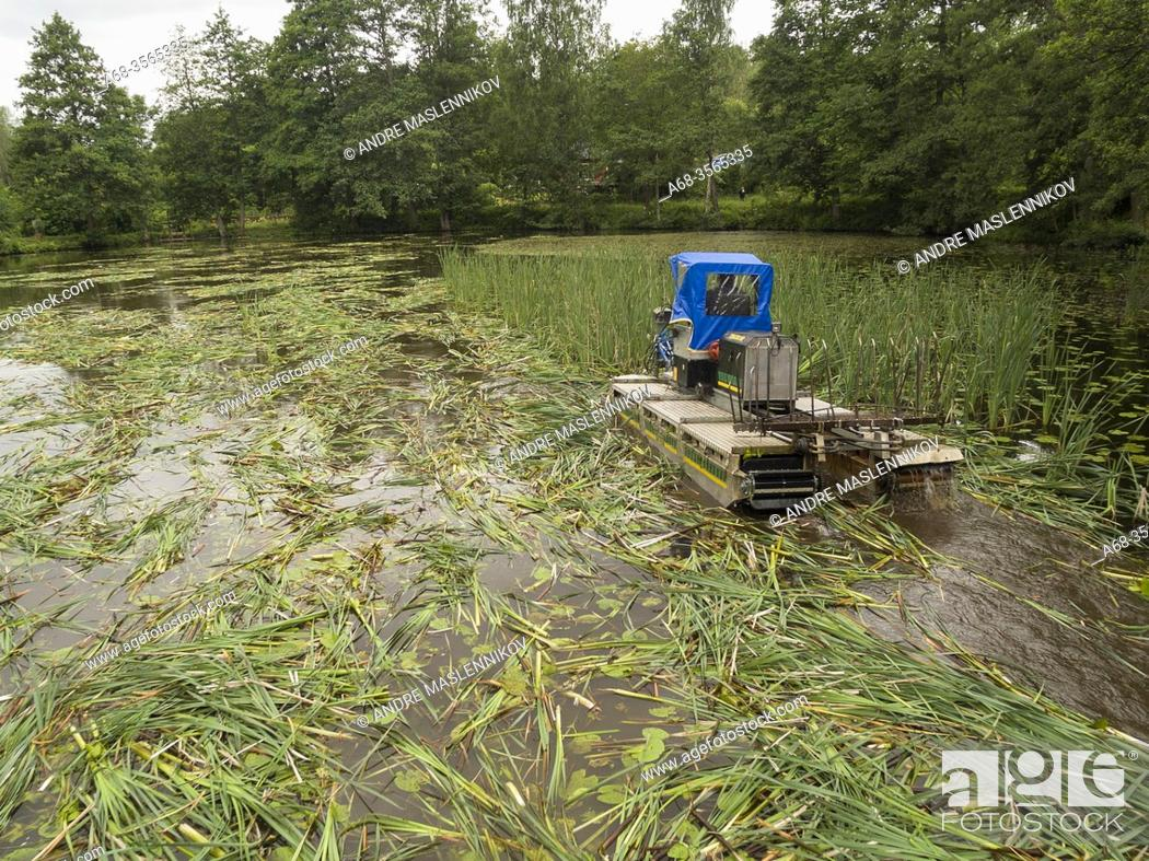 Stock Photo: Reed clearing with machine on pontoons. Photo: André Maslennikov.