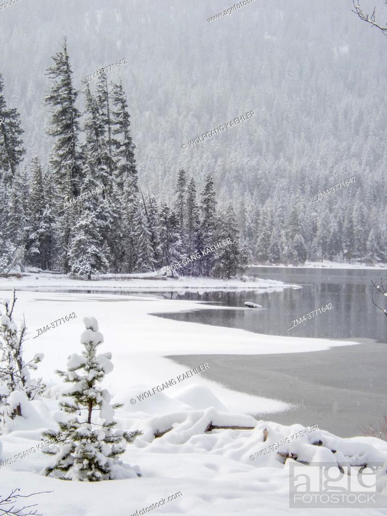 Stock Photo: View of the shoreline with the snow-covered Emerald Island in the background at Lake Wenatchee State Park in eastern Washington State, USA.
