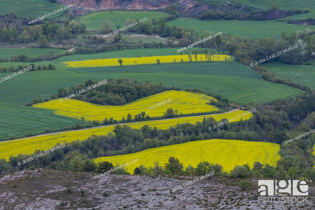 Stock Photo: Agricultural fields, Montsec Range, The Pre-Pyrenees, Lleida, Catalonia, Spain, Europe.