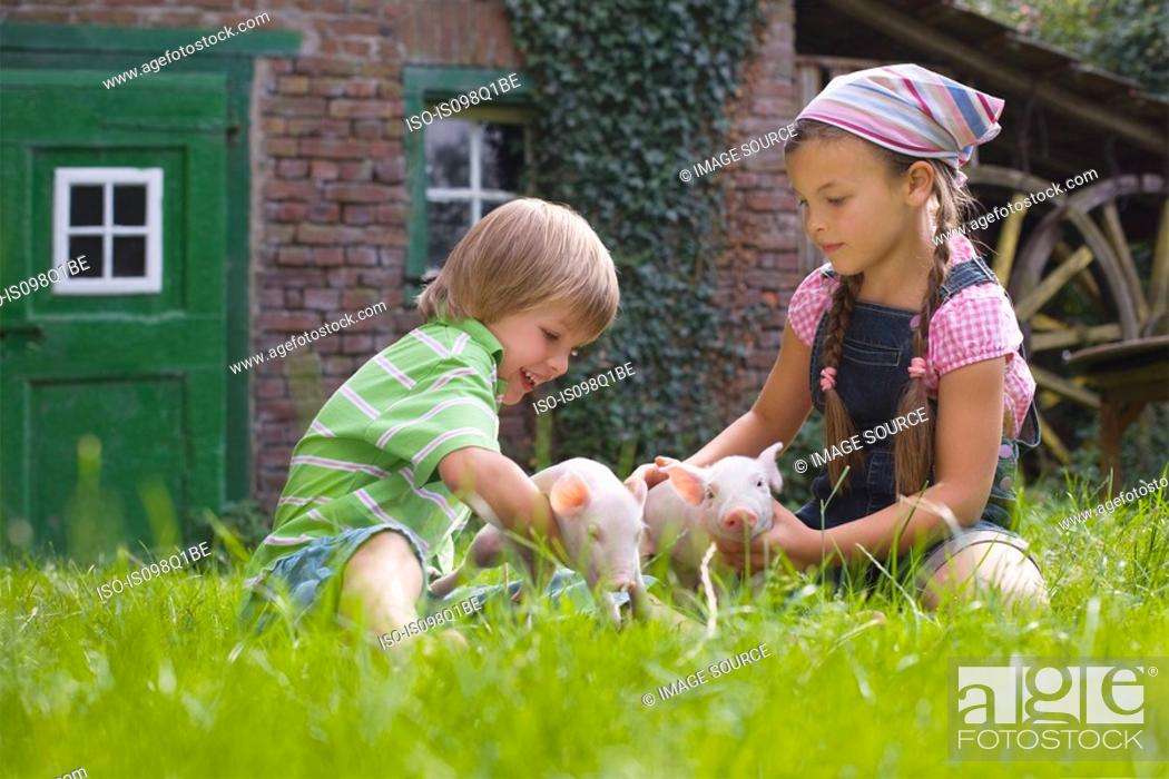 Stock Photo: Brother and sister playing with piglets.