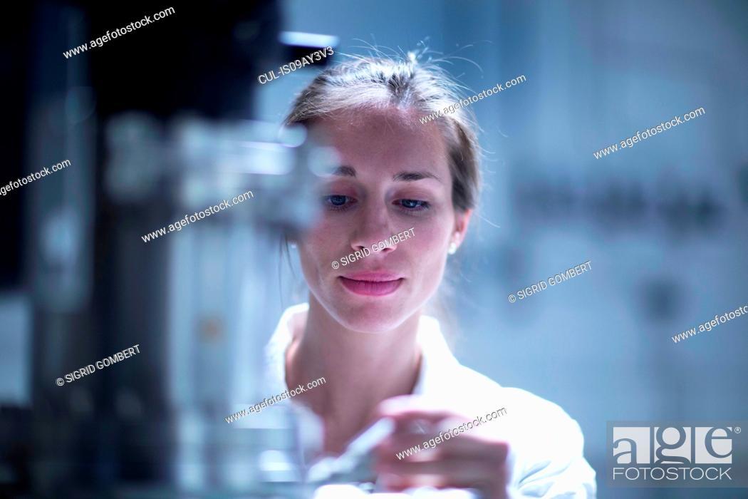 Imagen: Scientist working with SEM microscope.
