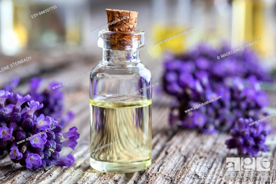 Stock Photo: A bottle of essential oil with fresh lavender flowers on a rustic wooden background.