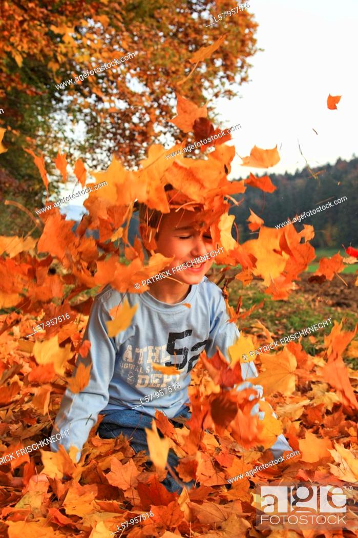 Stock Photo: boy playing in pile of leaves, fall Zuerich, Switzerland.