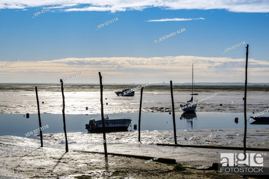 Stock Photo: Beach. Oyster farming area, Arcachon Bay. Bassin d'Arcachon. Lège-Cap-Ferret, Gironde. Aquitaine region. France Europe.