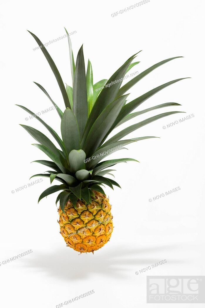 Imagen: Suspended Pineapple with Shadow on White Background.