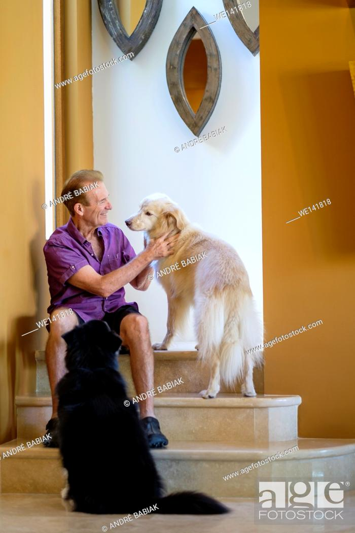 Stock Photo: Retired man petting his dogs in his house.